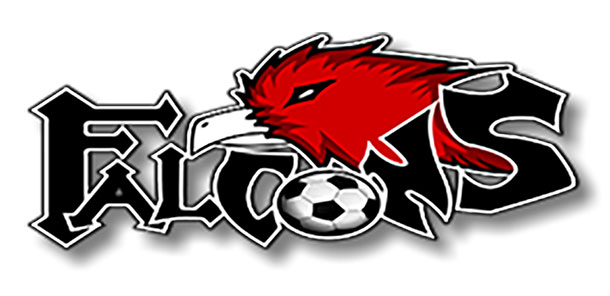 falconlogo
